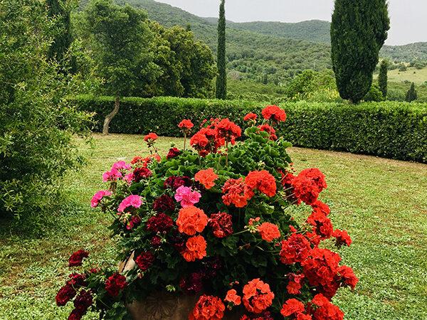 camera matrimoniale vista giardino villa a castiglione della pescaia (29)