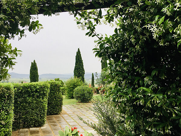 camera matrimoniale vista giardino villa a castiglione della pescaia (34)